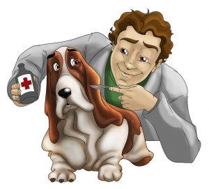 seguro salud mascotas